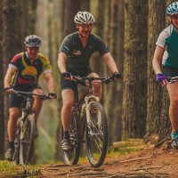 Biking Guides & Rentals
