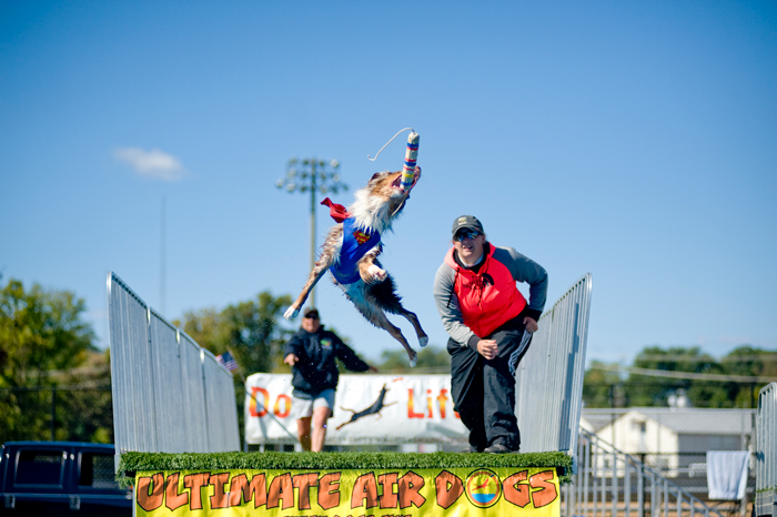 go fest ultimate air dogs